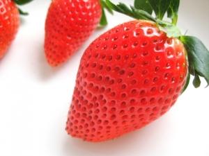 ニキビ予防にビタミンBやビタミンCが含まれる食品を摂ろう