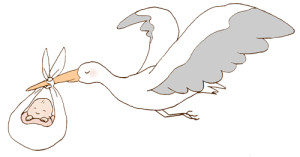 不妊治療のファーストステップタイミング法上手にコウノトリを捕まえる方法