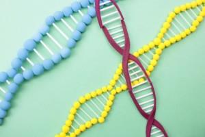 知的障害の原因は先天的な遺伝子の異常や出産時のトラブル