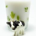 牛乳が生理痛をひどくするってホント?生理痛を上手に乗り切る食べ物の選び方