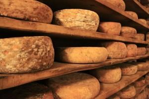 チーズの様なろうそくの様な古本の様な臭いが加齢臭