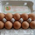 妊娠中に卵を食べるのは良くない!?妊娠中に避けた方が良いもの・積極的に食べたいのものは?