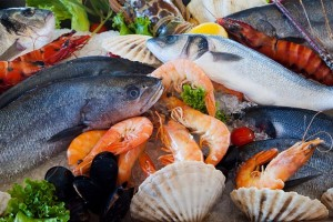 胆石に良い魚介類