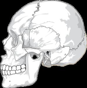 脳腫瘍は頭蓋骨の中に良性または悪性の腫瘍ができてしまうこと
