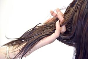 髪の毛はどうして伸びるの?