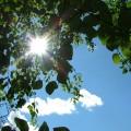 最近見直され始めている日光浴の効果と注意点