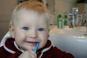 機嫌の良い時に歯ブラシを使って歯みがきに挑戦