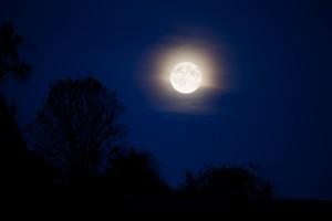 ロマンチックな満月だけど……