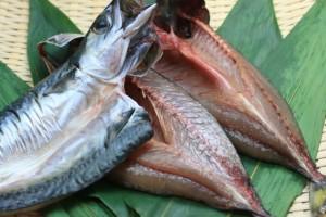 オメガ3脂質を多く含む青魚