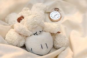 妊娠中は寝る時間を大切にする