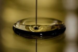 サボテンオイルの使い方を知っていますか?