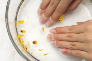 お湯に手を付けて温めて、爪が柔らかい状態で切るとうまくいきます。