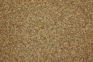 南米アンデス原産の雑穀