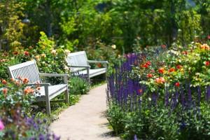 春のアトピーは花粉が主な原因