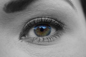 DHAは眼の健康にも役立ちます