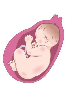 腸内の水分も赤ちゃんに取られてしまいます
