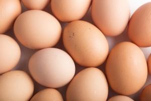卵は完全食品でもあります