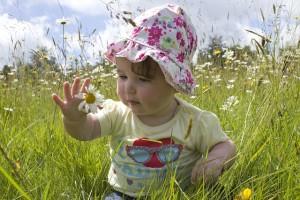一歳を過ぎると、歩き始め、運動量がかなり増えてくる