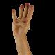 hand-1006417_640
