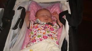 実は人間の赤ちゃんって運搬中に寝てしまう傾向があるのです