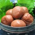 梅の本場、和歌山県で話題!不妊に梅が効くって本当!?