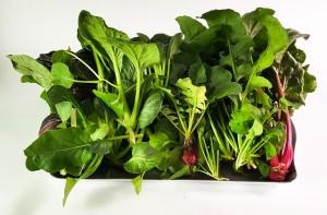 毎食、かなりの量の緑の野菜が必要