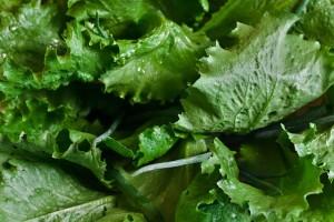 緑の野菜は生殖能力を向上させる!