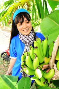 ダイエットには青バナナ!