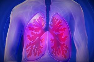 肺のバランスを崩しやすい?