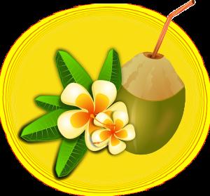"""実はココナッツシュガーは実から精製されるものではなく、ココナッツの""""花""""から摂れるのだそうです"""