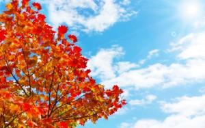 秋の紫外線は4月と同じくらい!
