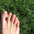 足の爪が変形して生えていく巻き爪の原因を5つ紹介!